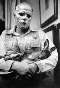 Wie man dem toten Hasen die Bilder erklärt